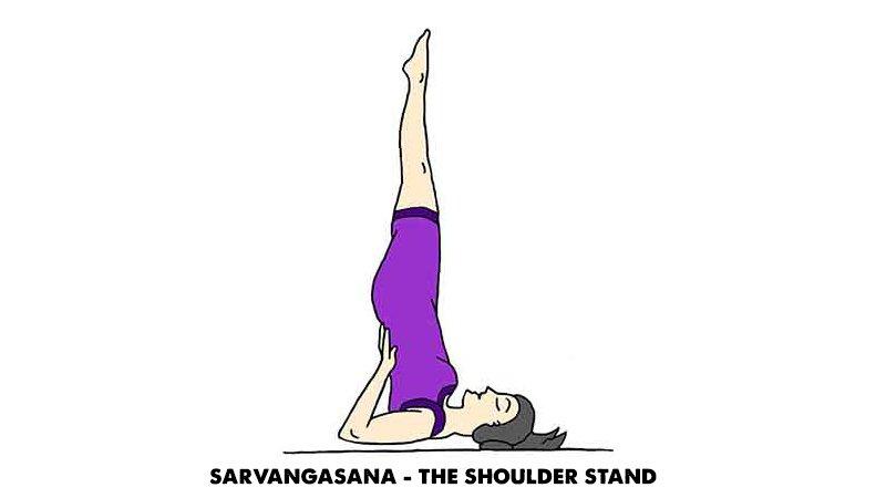 Sarvangasana -The shoulder stand