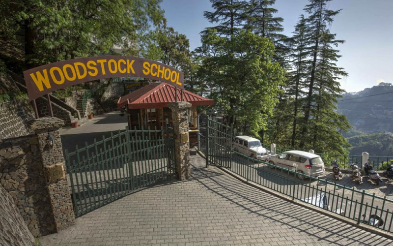 Wood Stock School